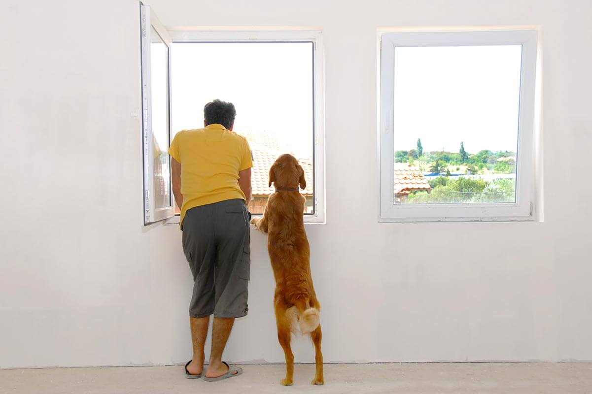 A man with his dog looking out of his window.